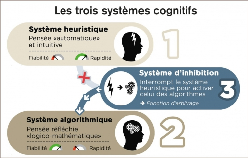 les3systemescognitifs_1255.jpg